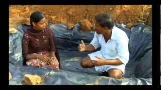 Preparation of Azolla Mother Pit - Telugu - SERP- Mahabubnagar - Andhra Pradesh