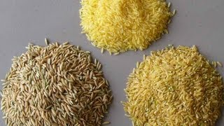 ALL ABOUT RICE: Parboiled vs Brown vs White