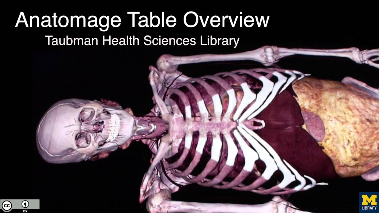 Thl Anatomage Table Overview Youtube