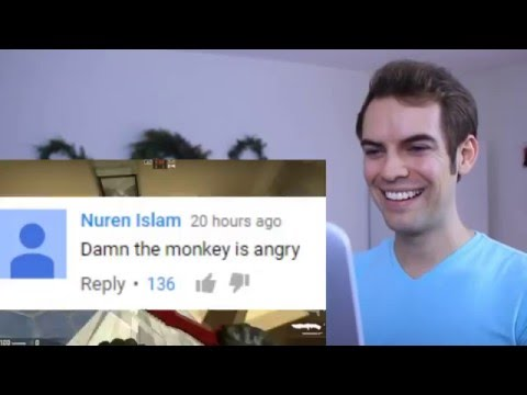 JacksFilms reacting to an awful react channel (leafyishere)