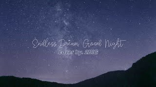 [2BIG COVER] AKMU - Endless Dream Good Night COVER BY 2BIG (vocal cover kpop)