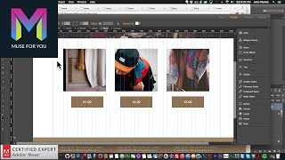 Building a Website from Scratch | Adobe Muse CC Tutorial | Muse For You