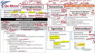 Farmacología - 3  RM19 2V FARMACOLOGIA  AMINOGLUCOSIDOS  SULFONAMIDAS  ANTITUBERCULOSIS