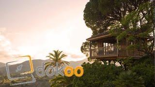 Traumhaus Baumhaus - In der Höhe eine Hütte | Doku