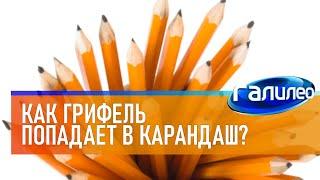 Галилео ✏ Как грифель попадает в карандаш?