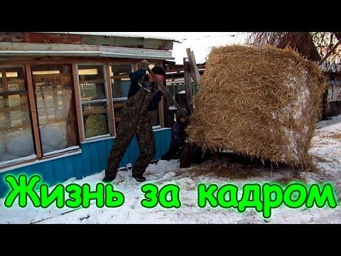Семья Бровченко. Жизнь за кадром. Обычные будни. (часть 114) (рел.)