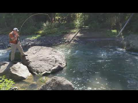 Yellowstone Park fishing