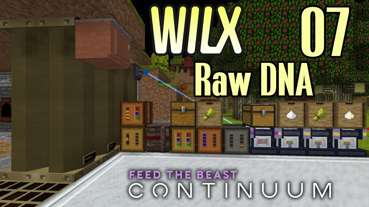 07 - Raw DNA - FTB Continuum