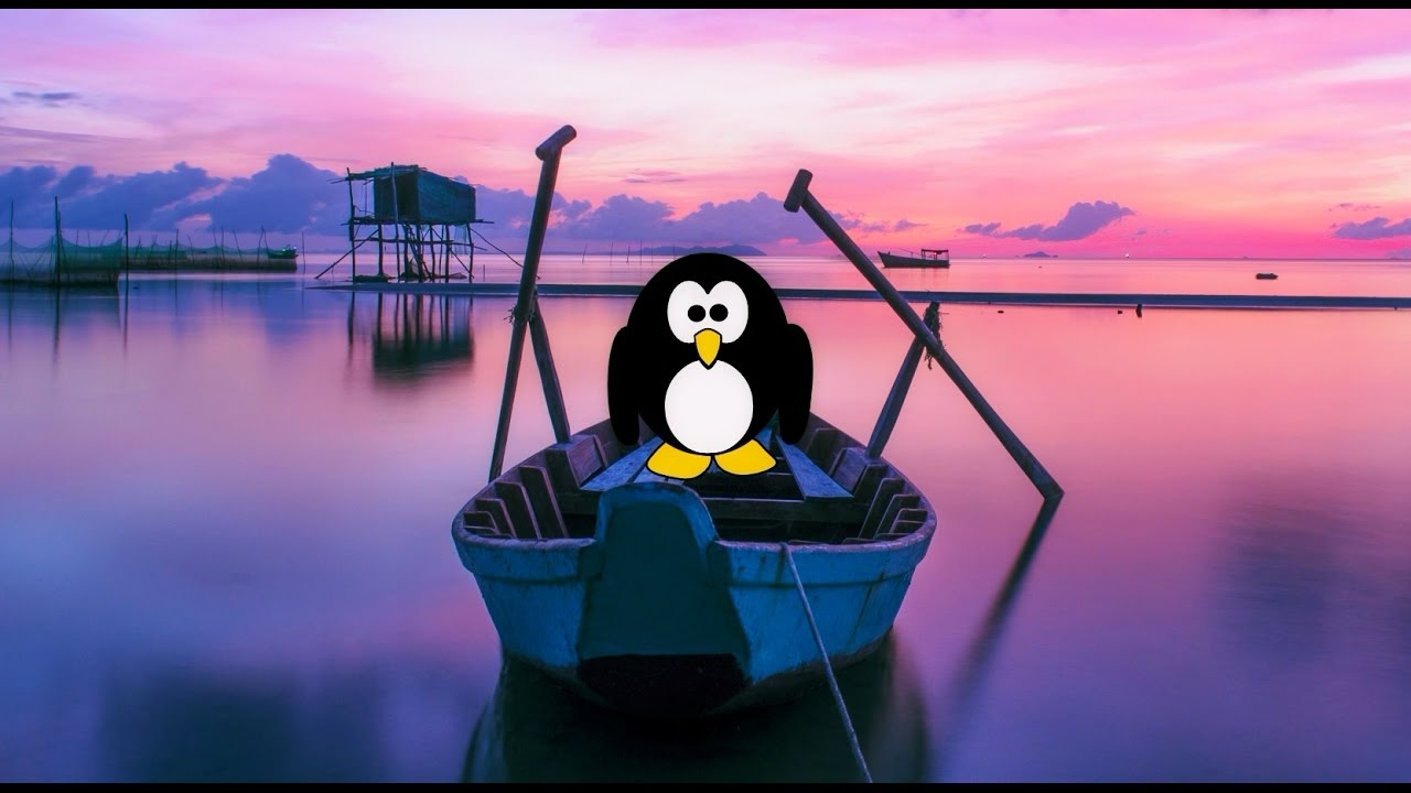 lustige guten morgen gr e mit dem kleinen pinguin youtube. Black Bedroom Furniture Sets. Home Design Ideas