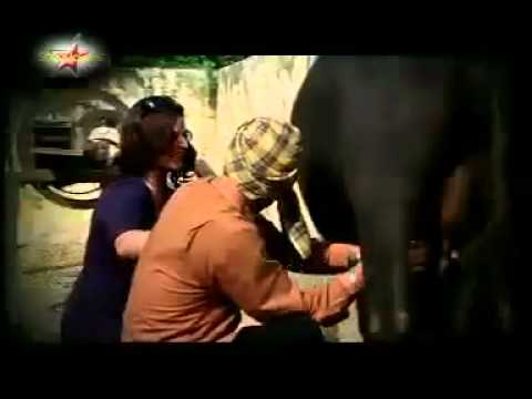 Dhuan Preet Harpal Official Song From Album Lock Up.flv
