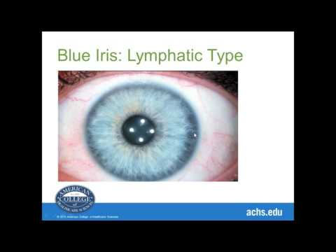 Introduction to Iridology with Betty Sue O'Brian