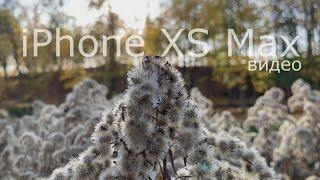 Большой обзор камеры iPhone XS Max. #2 Видео.