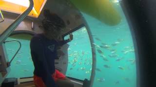 Enjoy The Underwater Thumbnail