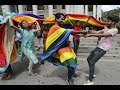 Days of Lot: India Legalizes Sex with Animals & Gay sex overturning Law section 377