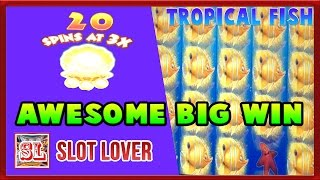 ** Awesome BIG WIN ** New Game ** Tropical Fish n others ** SLOT LOVER **(Slot Lover - Slot Machine Videos Channel Usually Post : Big Wins, Super Big Wins, Live Play, Double or Nothing, High Limit Pulls with Friends To Support our ..., 2016-10-18T17:49:47.000Z)