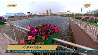Биыл Астана аумағына 386 мың ағаш егілген