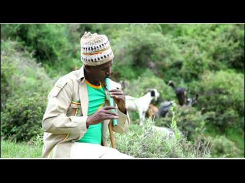 Yelma Shewa - HoYa HoYe(hoya hoye) - New Ethiopian Music 2017(Official Video)
