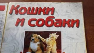 Кошки и собаки коллекция наклеек DS STICKERS CATS AND DOGS