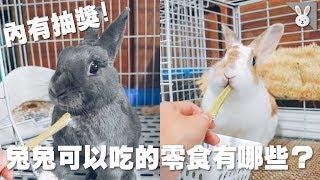 【侑敏頻道】兔兔可以吃的零食/果乾、蔬果乾、啃木到底該怎麼選!?