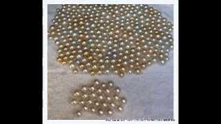 Golden South Sea Pearls Wholesale Lombok Pearls Miss Joaquim