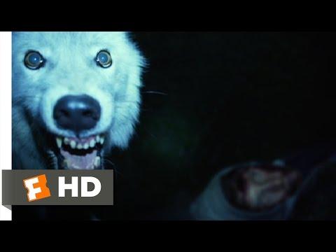 Nightlight 210 Movie   Ben Was Here 2015 HD