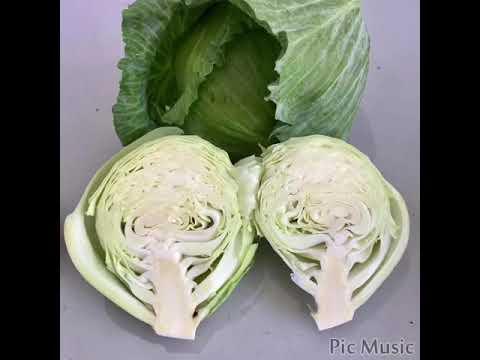 បន្លែខ្មែរសុវត្ថិភាព - Safe and clean vegetables produced by Cambodia farmers