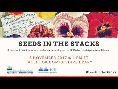Seeds in the Stacks