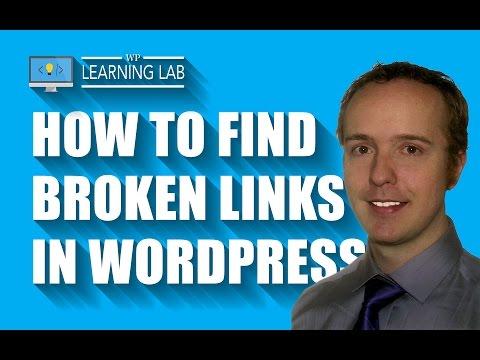 WordPress Broken Link Checker Plugin - Improve WordPress SEO & User Experience - WP Learning Lab - 동영상