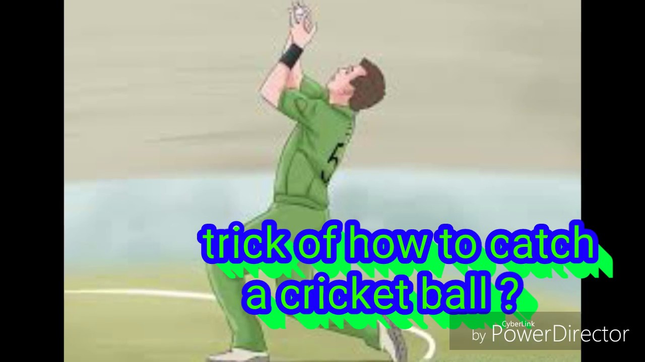 Trick Of How To Catch A Cricket Ball