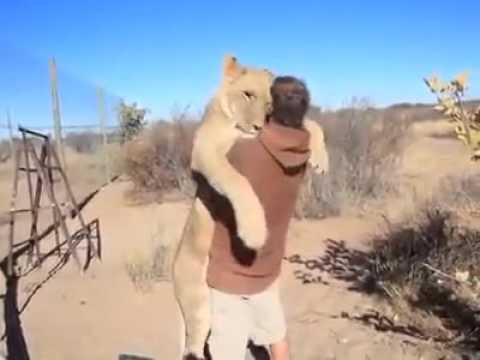 persahabatan yang mengharukan antara manusia dan binatang