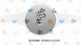 DJ Flow - Perreo 4:21 Hs (Flowremix 2017)