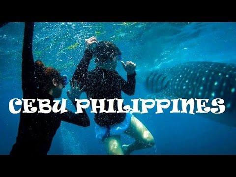 Exploring CEBU PHILIPPINES | OSLOB x ALEGRIA x MOALBOAL |
