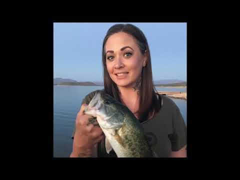 Fishing In Parker Arizona