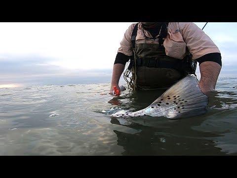 Wade Fishing For Baffin Bay GIANTS!!!