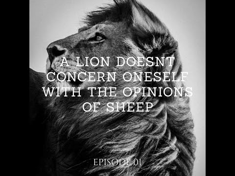 Episode 01: A Lion Don't Concern Oneself with Sheep