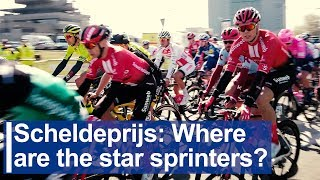 Scheldeprijs: Where are the star sprinters?