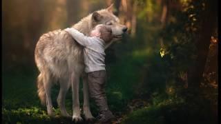 Волчёнок  -  про мальчика которого воспитала волчица