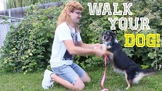 One of Aaron DeBoer's most viewed videos: Walk Your Dog - Aaron DeBoer (Music Video)