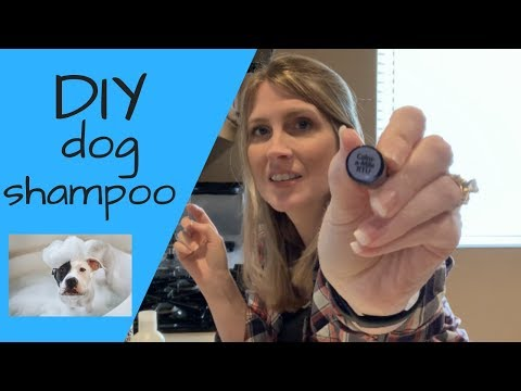 Homemade DIY Dog Shampoo Flea Shampoo Soothing Dog Shampoo