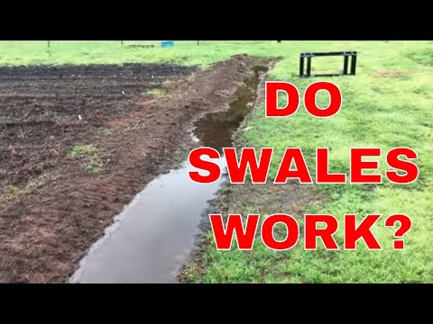 SWALES ~ DO THEY WORK FOR EROSION CONTROL?