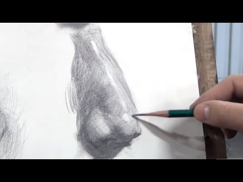 Drawing a Nose in Pencil | Step by Step