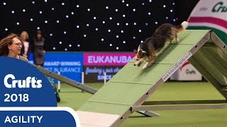 Agility - Championship Final | Crufts 2018