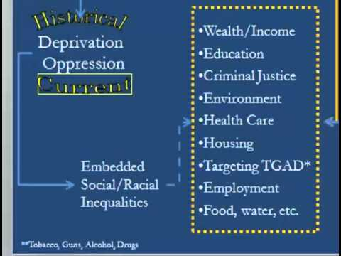 inequalities in healthcare older person health and social care essay Abstract a lifetime spent studying how social determinants of health lead to health inequalities has clarified many issues first is that social stratification is.