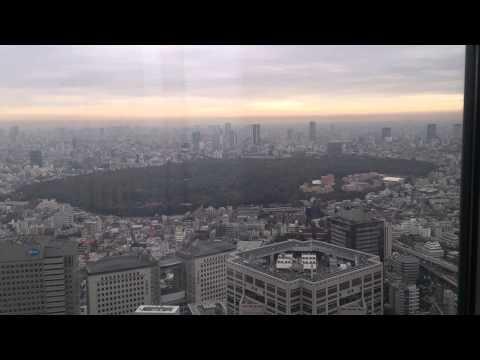 The Tokyo Metropolis cityscape