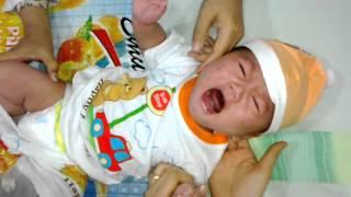 theo imunisasi dpt dan polio