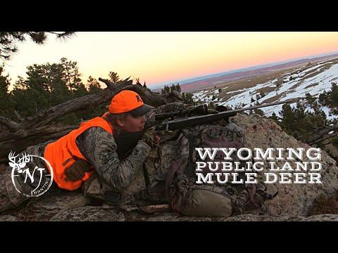 2018 Wyoming Public Land Mule Deer