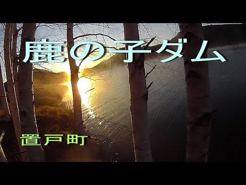 北海道置戸町 釣人を熱くさせる鹿の子ダムの釣り アメマスの宝庫 極寒のルアーフィッシング (対象魚:サクラマス・ニジマス・アメマス)Trout Lure Fishing Hokkaido Japan
