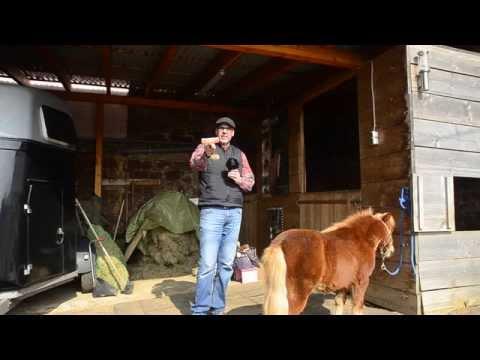 WHTV: FURminator für Pferde (Tutorial)