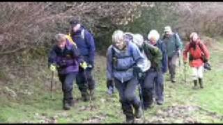 Taunton Deane Ramblers walk in Chardstock, Devon