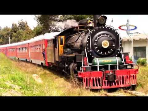 Cómo es viajar en el Tren Turístico de la Sabana